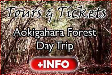 Aokigahara Tour